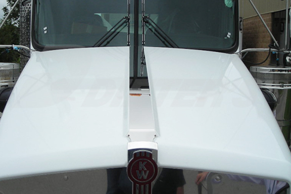 T800 Hood Strip image