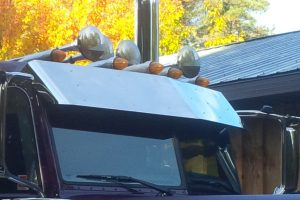Pride and Class Standard Cab Sunvisor MD9149